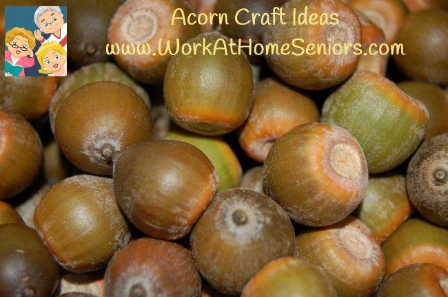 AcornCrafts